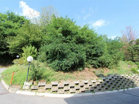 Building plot for own home at Castelrotto